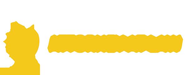 Matt Savich, Detroit Defense Lawyer